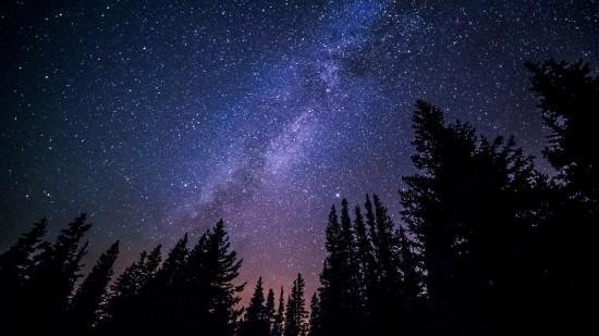 Estrellas, Bosque, Naturaleza, Canadá