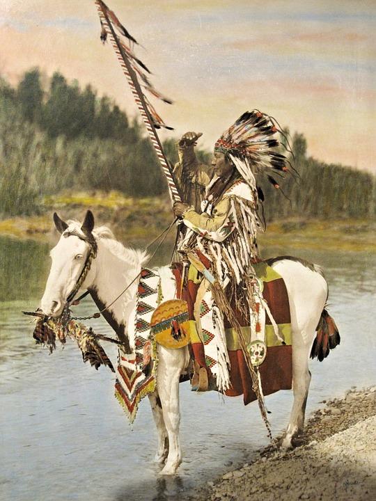 Blackfoot, Nativo, Indígena, Canadá