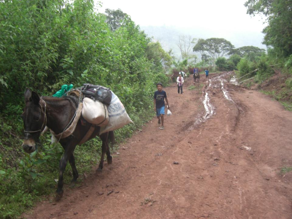 Viaje, Perú, Moyobamba, San Martin
