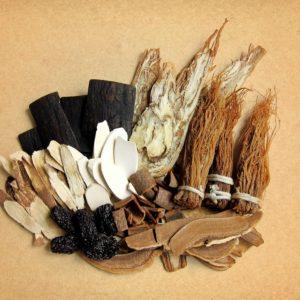 la medicinatradicional china, renal, corazón, sangre